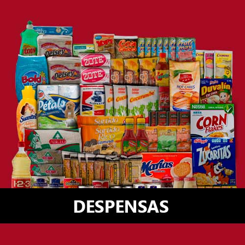 despensas-economicas